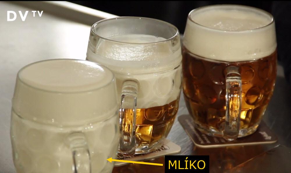 Mlíko | Jak si (nechat) natočit pivo?