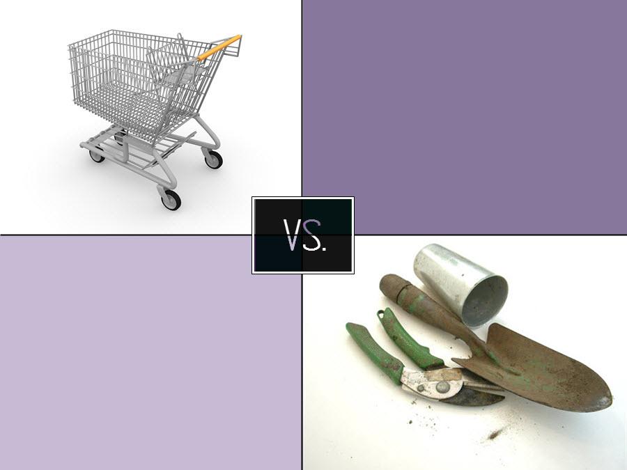 Kupované nebo vypěstované ovoce a zelenina