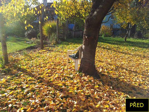 PŘED   Shrabat listí