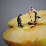 Jak očistit jablko a hrušku? | Pojďme si zpříjemnit konzumaci jablka! | 1.díl
