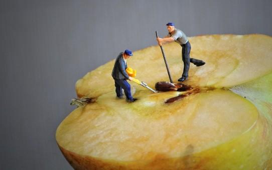 Jak očistit jablko?